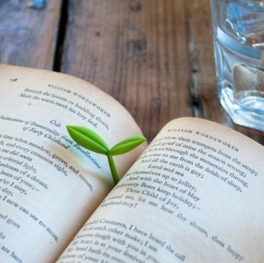 germoglio da libro